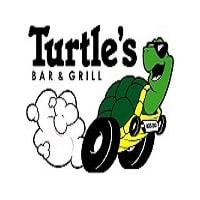 Turtle's Logo2